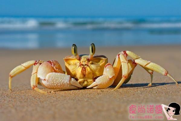 经常吃螃蟹有啥好处和坏处呢