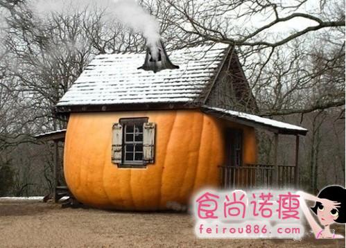 蔬果房子 你想住进去么?